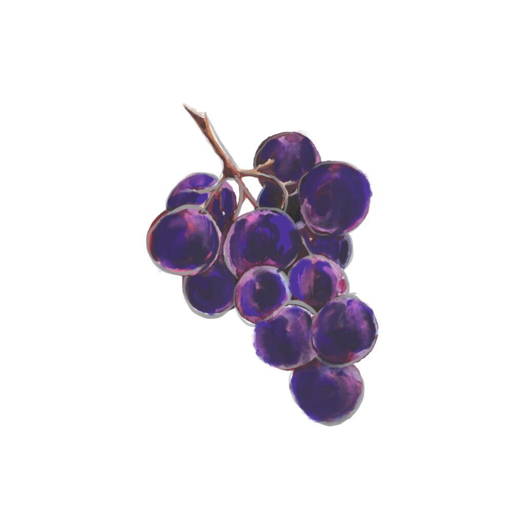 Le Delizie del monte Baldo - uva